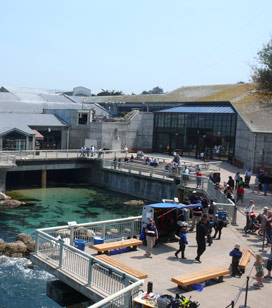 Monetery Bay Aquarium