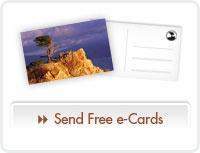 Send Free e-Cards