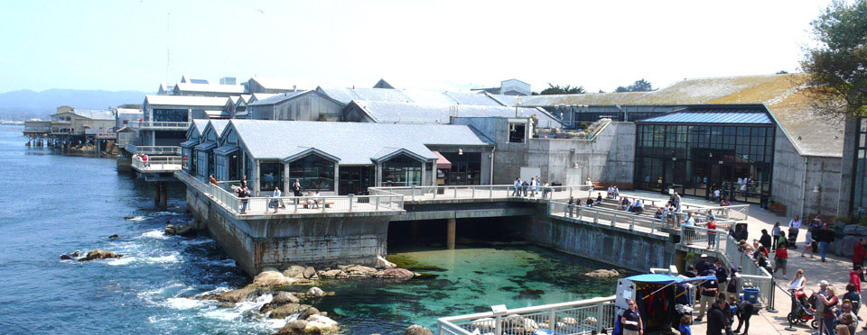 The Monterey Bay Aquarium