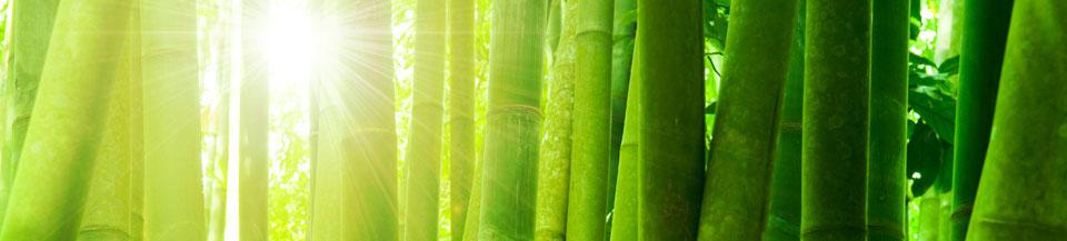 green-material